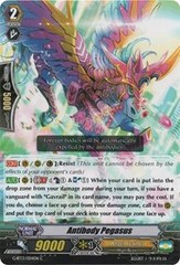 Antibody Pegasus - G-BT13/054EN - C