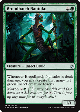 Broodhatch Nantuko - Foil