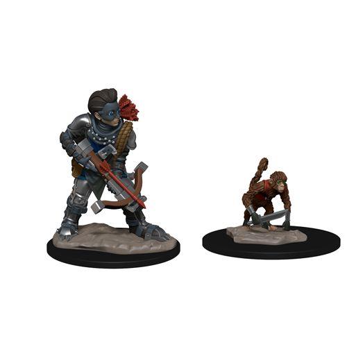 Wardlings: Boy Rogue And Monkey
