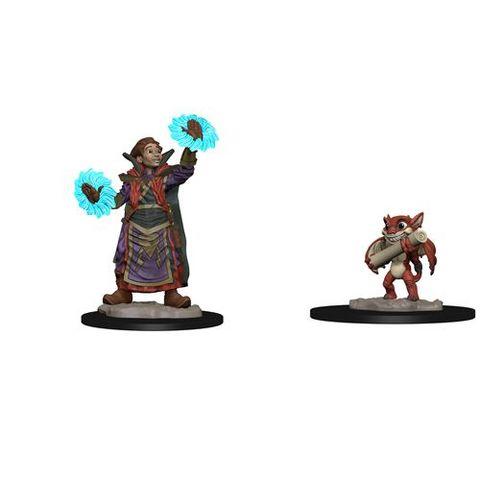 Wardlings: Boy Wizard And Imp