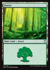 Forest (311)