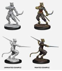 Nolzur's Marvelous Miniatures - Male Tabaxi Rogue