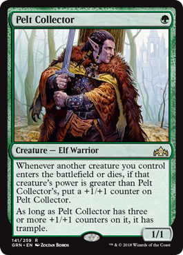 Pelt Collector - Foil