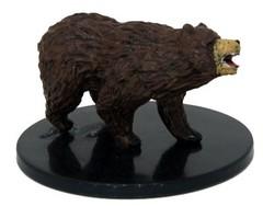 Brown Bear - 25/44