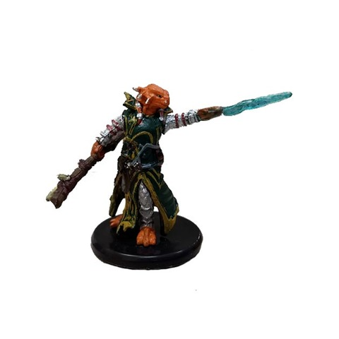 Dragonborn Draconic Sorcerer (Green Robe) - Gaming Miniatures » D&D