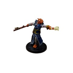 Dragonborn Draconic Sorcerer (Blue Robe) - 12a/44