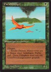 Birds of Paradise - German