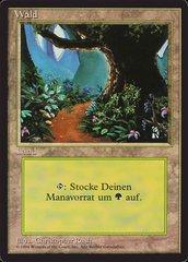 Forest (Path) - German