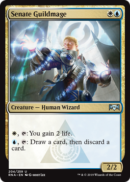 Senate Guildmage - Foil