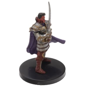 Human Paladin of the Oath of Vengeance