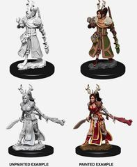 Nolzur's Marvelous Miniatures - Female Human Druid
