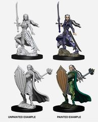 Nolzur's Marvelous Miniatures - Female Elf Paladin
