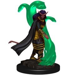 D&D Premium Tiefling Female Sorcerer