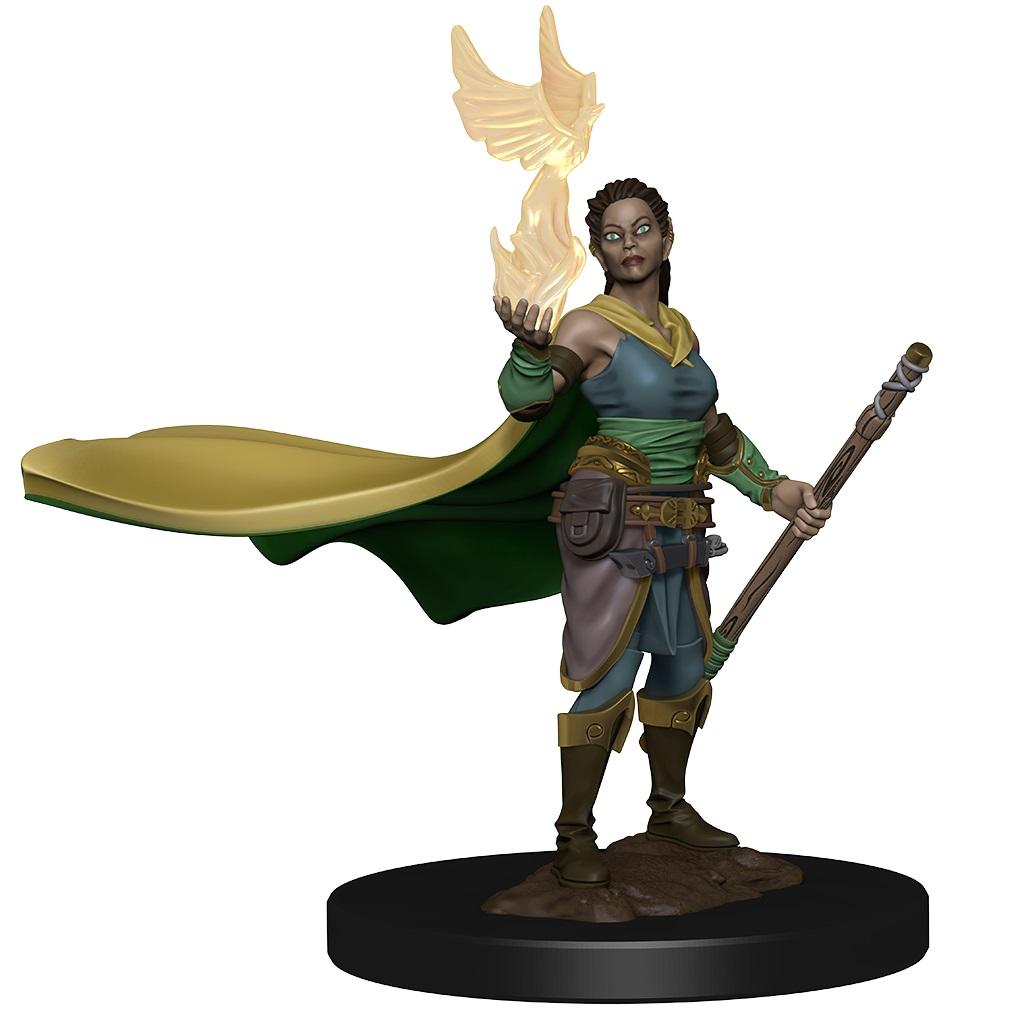 D&D Premium Elf Female Druid