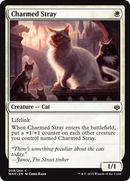 Charmed Stray - Foil