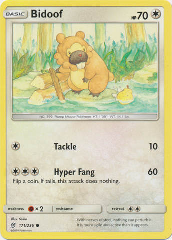 Bidoof - 171/236 - Common