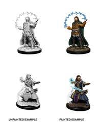Nolzur's Marvelous Miniatures - Male Human Wizard