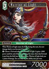 Warrior of Light - 11-044H