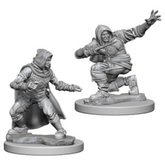 Pathfinder Battles Unpainted Minis - Human Male Rogue