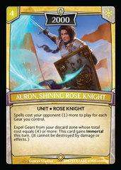 Auron, Shining Rose Knight