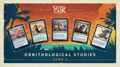 Secret Lair Drop: Summer Superdrop - Ornithological Studies