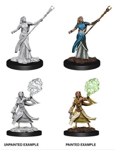 Nolzurs Marvelous Miniatures - Female Elf Sorcerer