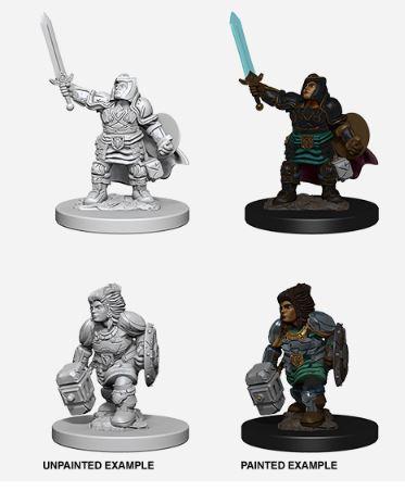 Nolzurs Marvelous Miniatures - Male Dwarf Paladin