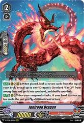 Igniroad Dragon - V-BT08/009EN - RRR