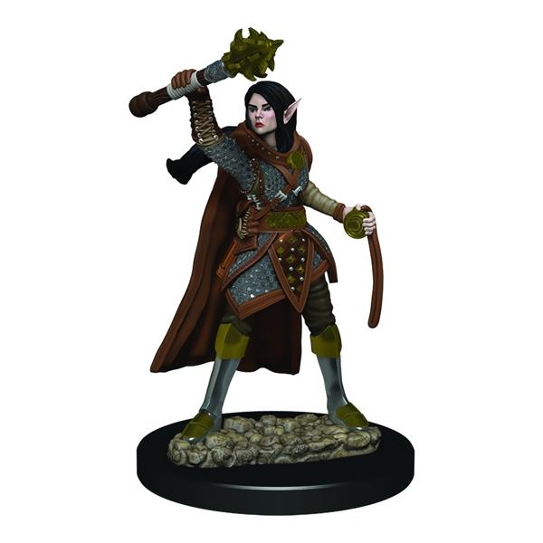 Female Elf Cleric