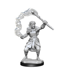 D&D Nolzurs Marvelous Miniatures - Firbolg Druid Female (Wave 13)