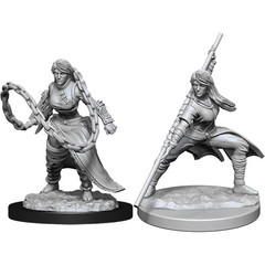 D&D Nolzur's Marvelous Unpainted Miniatures: W14 Female Human Monk