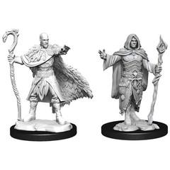 D&D Nolzur's Marvelous Unpainted Miniatures: W14 Male Human Druid