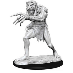 D&D Nolzur's Marvelous Unpainted Miniatures: W12.5 Troll