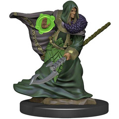 D&D Premium Painted Figure: W5 Male Elf Druid