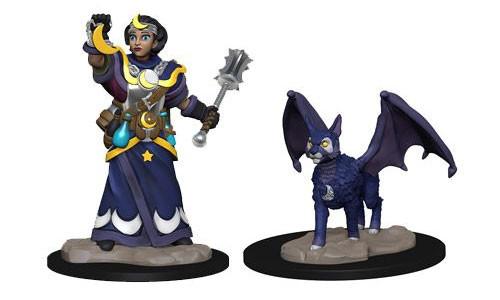 Wardlings: Girl Cleric & Winged Cat