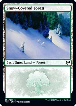 Snow-Covered Forest (284)