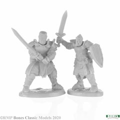 77676 - Knight Heroes (2)