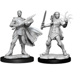 Magic: The Gathering Unpainted Miniatures: Rowan & Will Kenrith