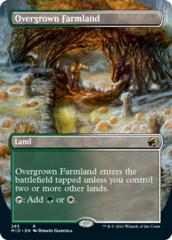 Overgrown Farmland - Foil - Borderless
