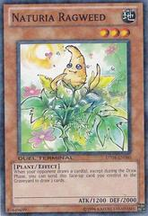 Naturia Ragweed - DT04-EN080 - Duel Terminal Normal Parallel Rare - 1st Edition on Channel Fireball