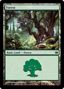 Forest (46)