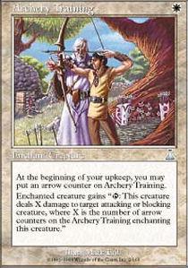 Archery Training - Foil