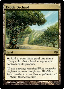Exotic Orchard - Foil