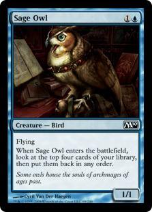 Sage Owl - Foil