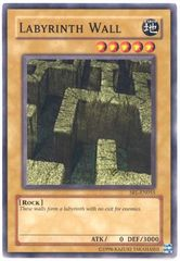 Labyrinth Wall - SRL-EN055 - Common - Unlimited Edition