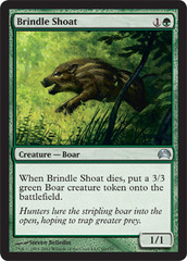 Brindle Shoat on Channel Fireball