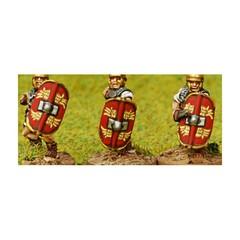 Roman convex oval shield (Marian Romans) (151009-0126)