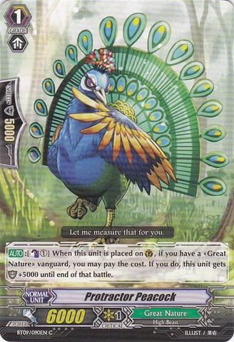 Protractor Peacock - BT09/090EN - C