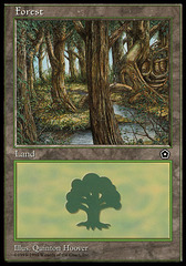 Forest (Creek)