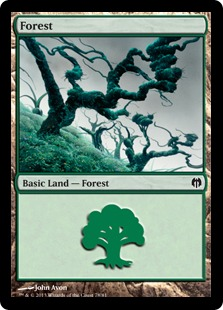 Forest (78)